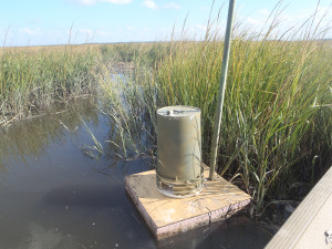floating camera trap
