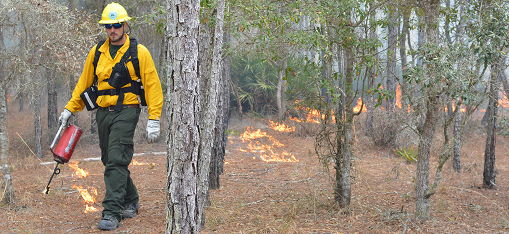 man in forest during prescribed burn